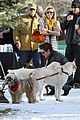 zac efron dog lover 10