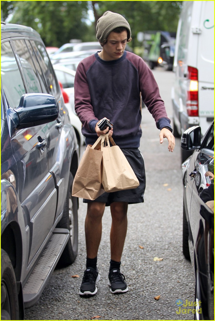 harry styles take out 03