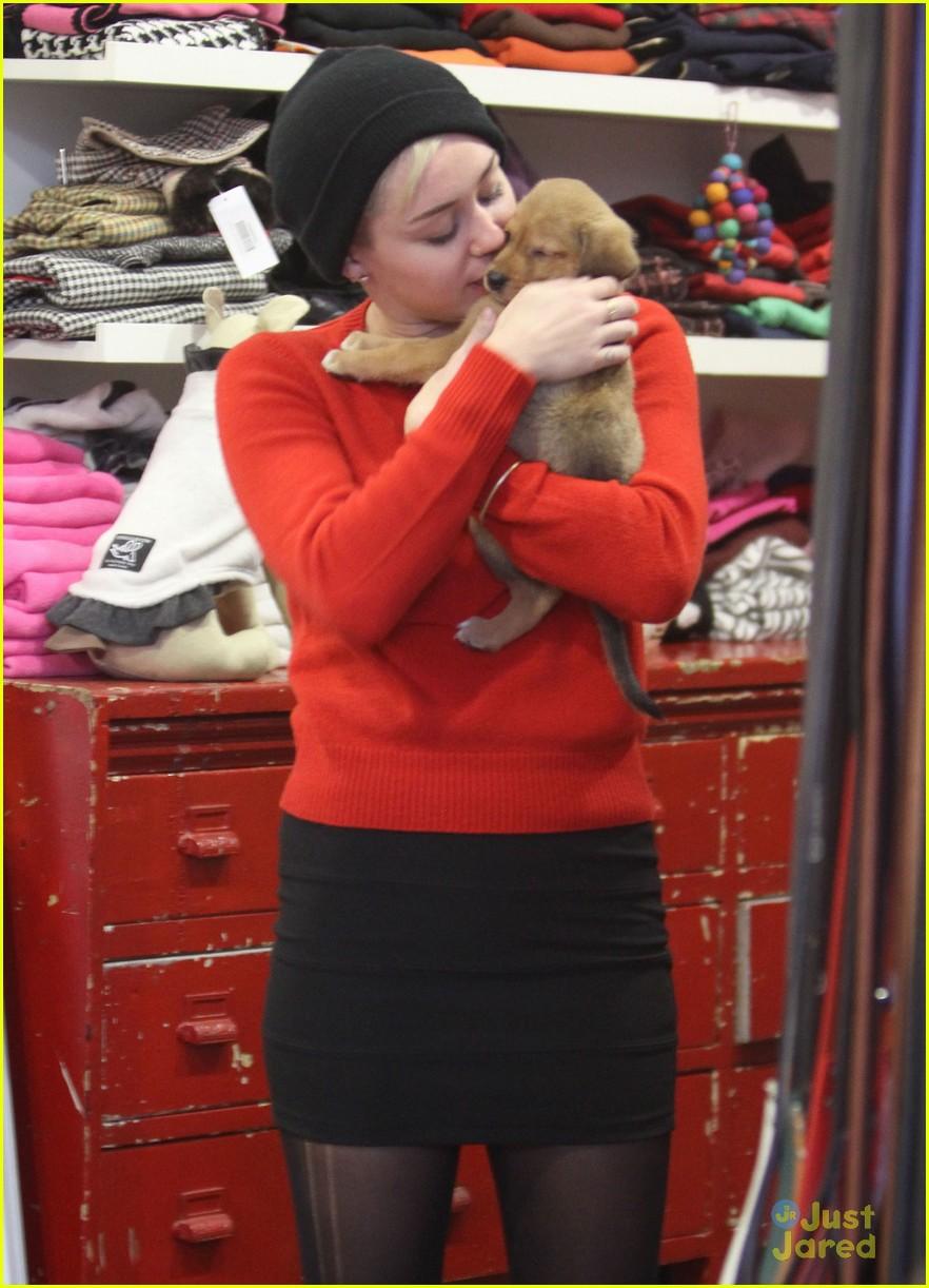 miley cyrus adopts new pup 11