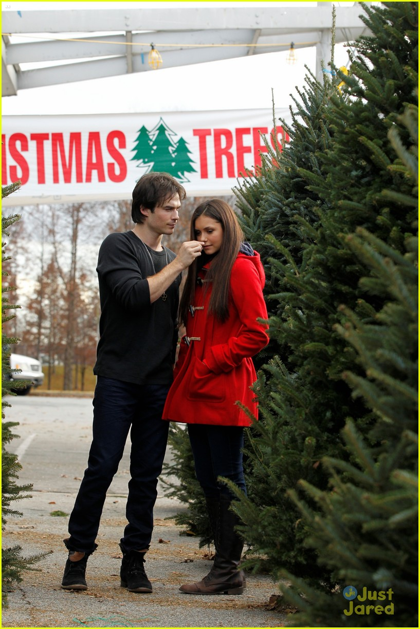 nina dobrev ian somerhalder tree shopping 02