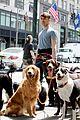 daniel radcliffe dog walker trainwreck nyc set 10