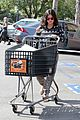 rachel bilson bed bath beyond before baby birth 15