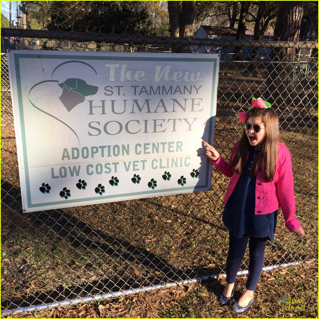 addison riecke humane society gifts 04