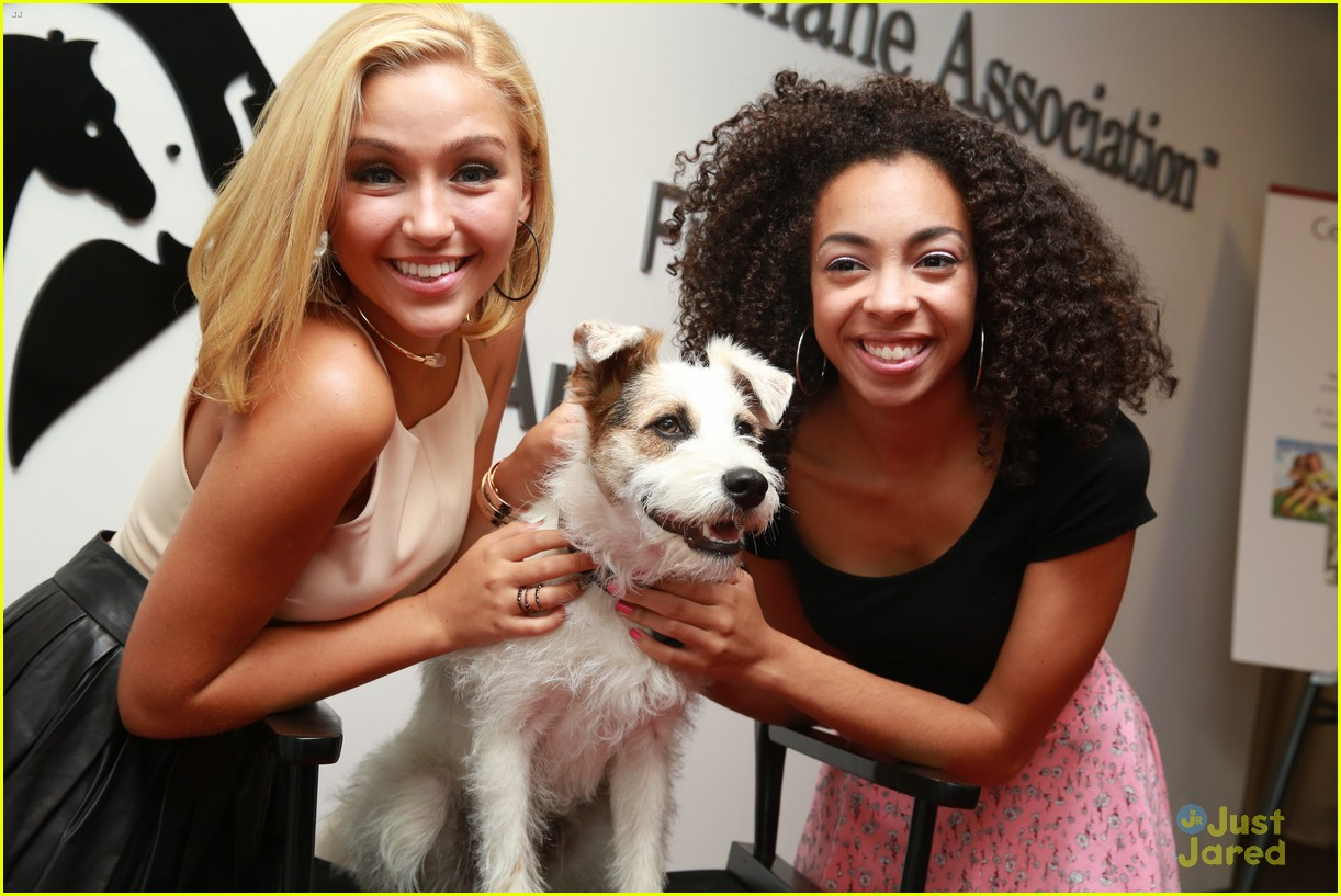 sweet suspense be kind animals 02
