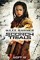 scorch trials new trailer watch here 02