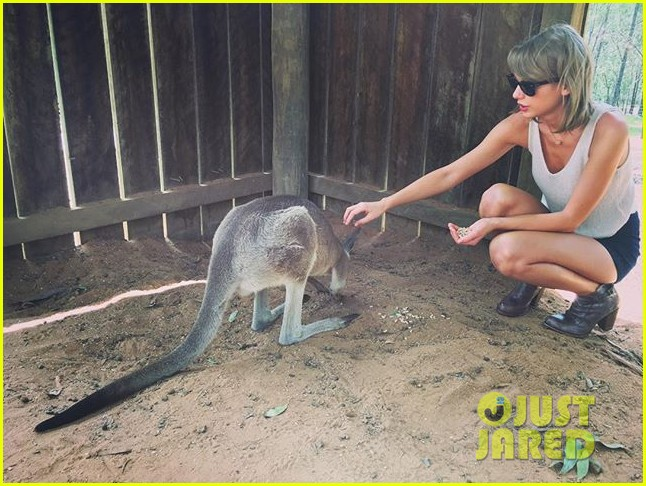 taylor swift blake lively hang out in australia 03