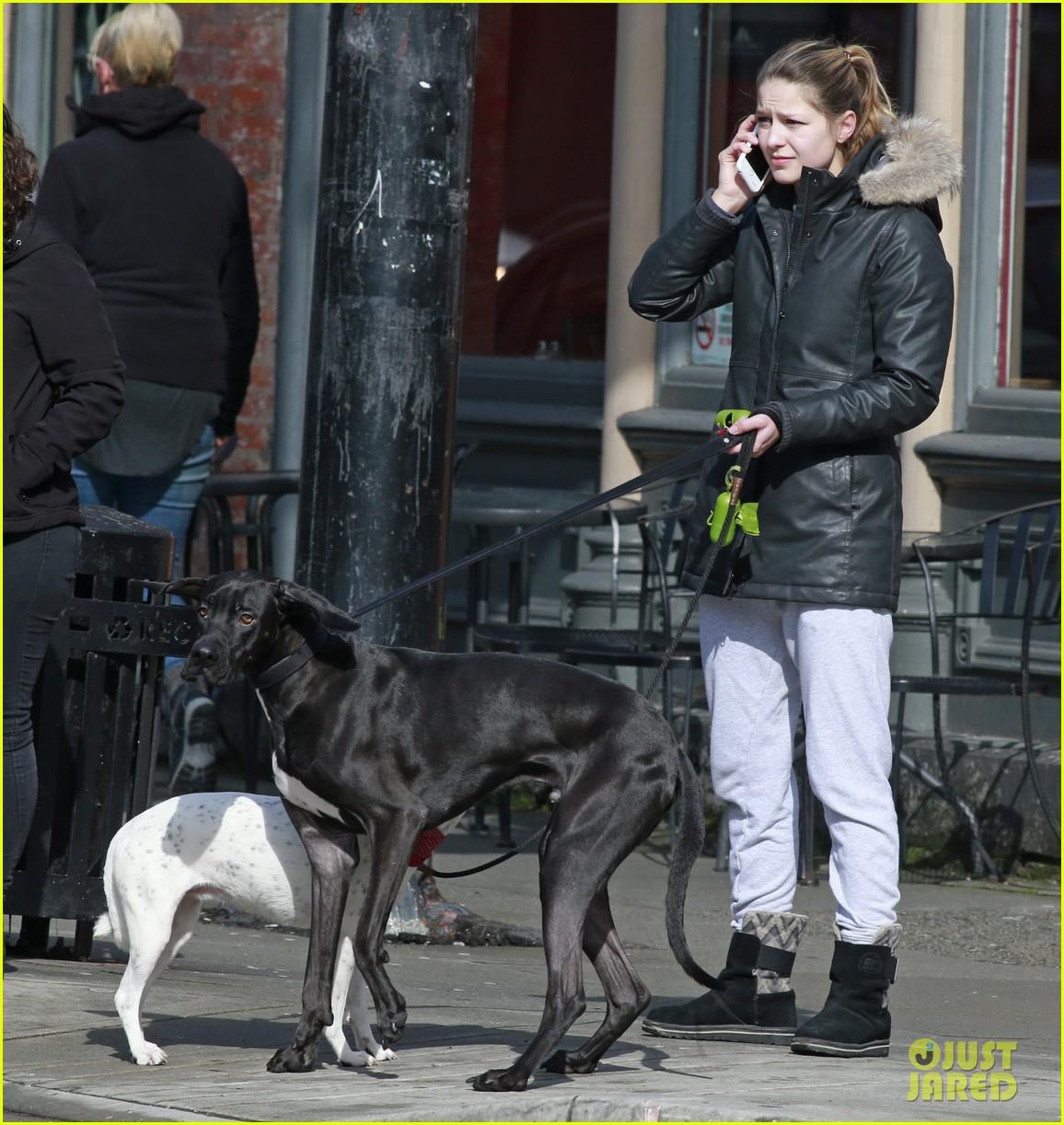 melissa benoist dating chris wood dogs 05
