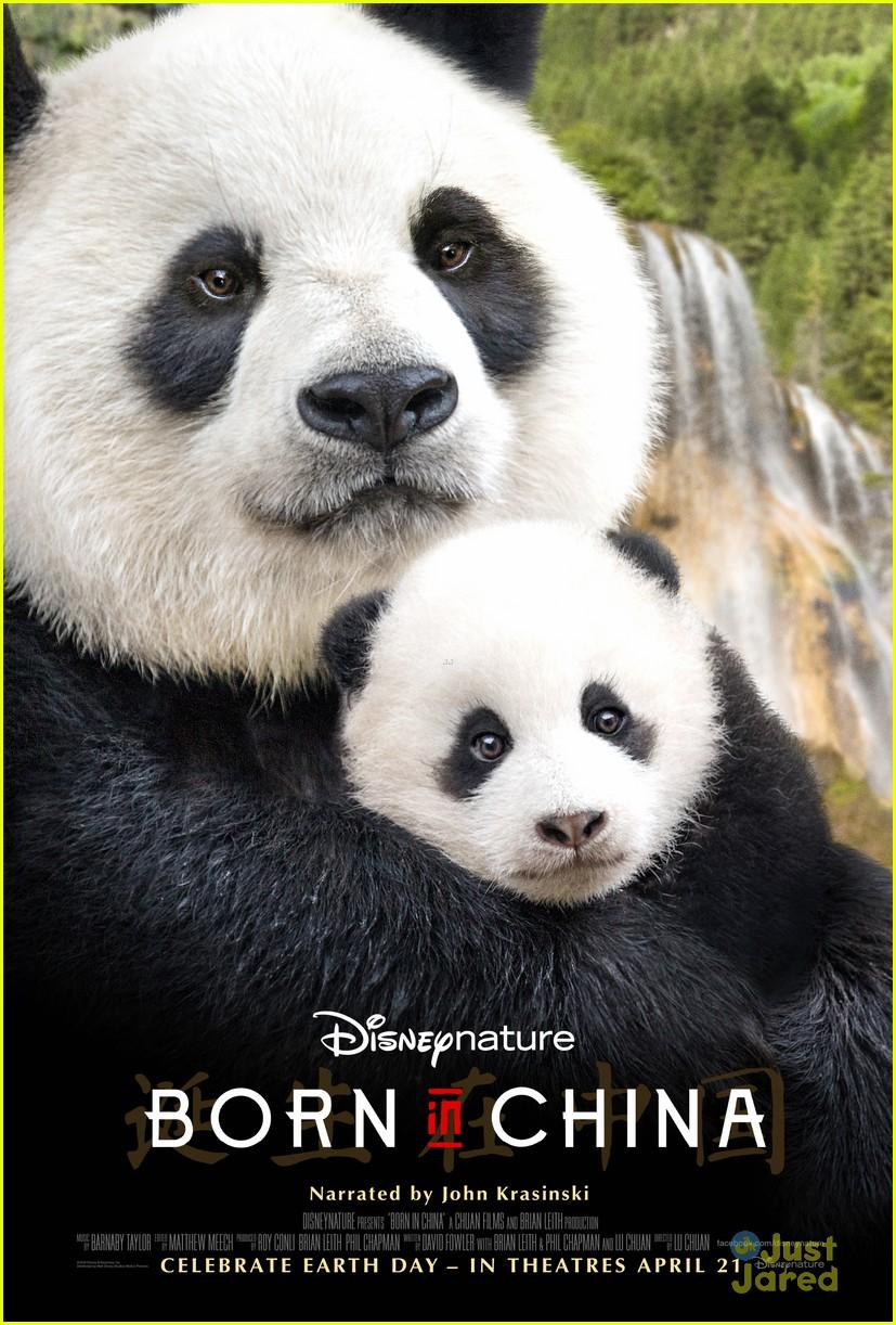 born china snow leopard story pandas monkeys 45