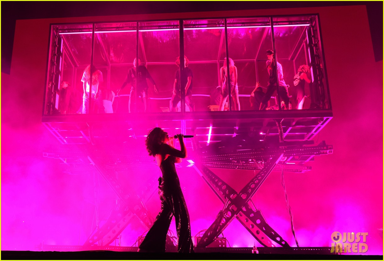 lorde performs on coachella weeknd two 13