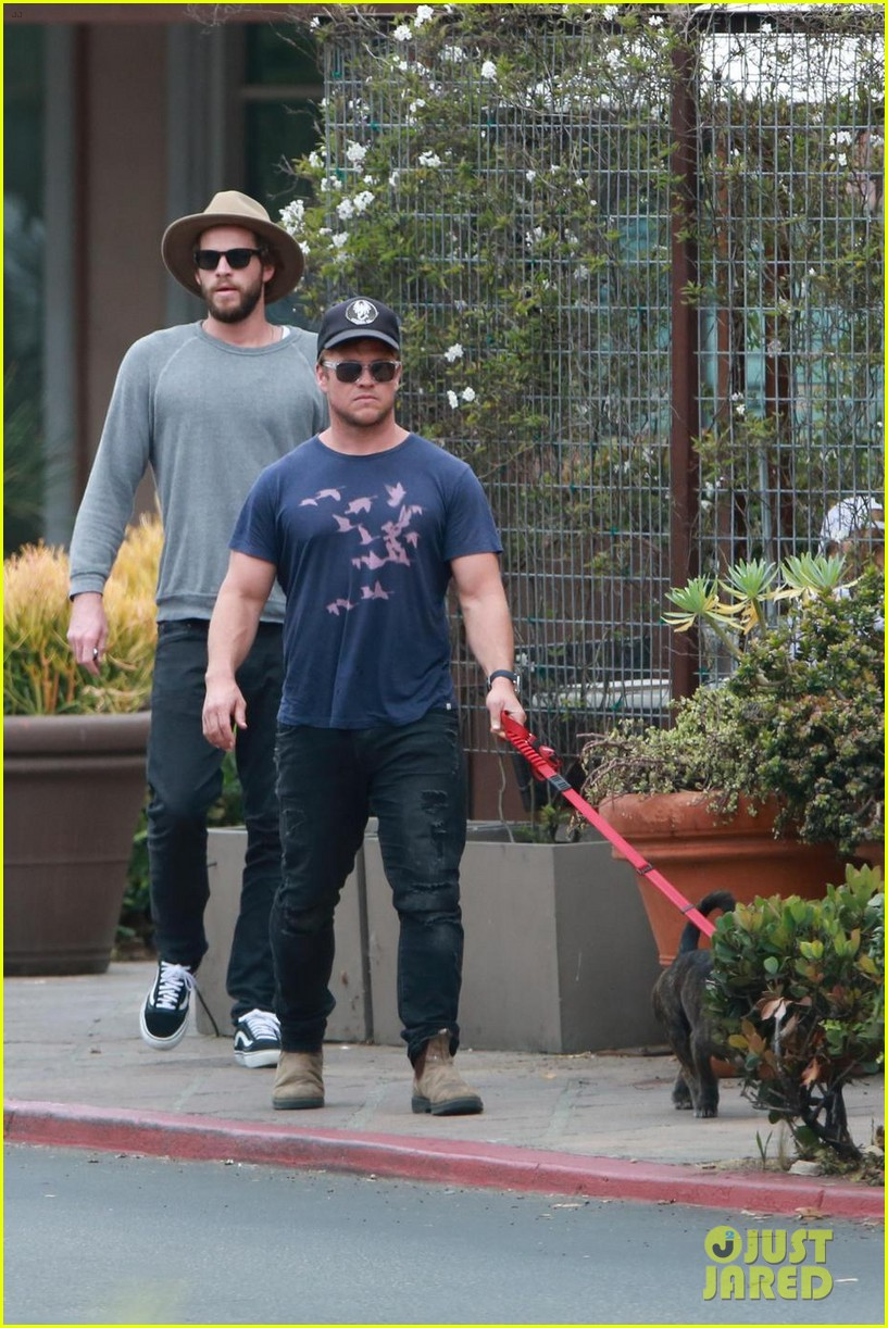 liam hemsworth grabs lunch with luke and parents in malibu 05