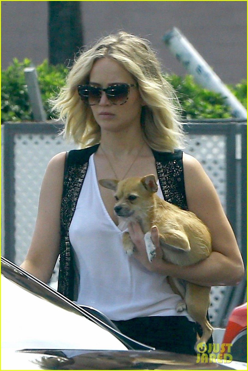jennifer lawrence holds her dog close while out in westwood 02