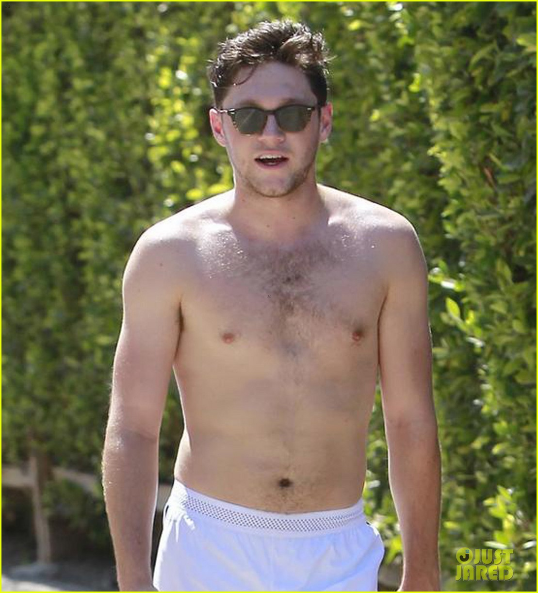 niall horan goes for shirtless hike at las runyon canyon 12