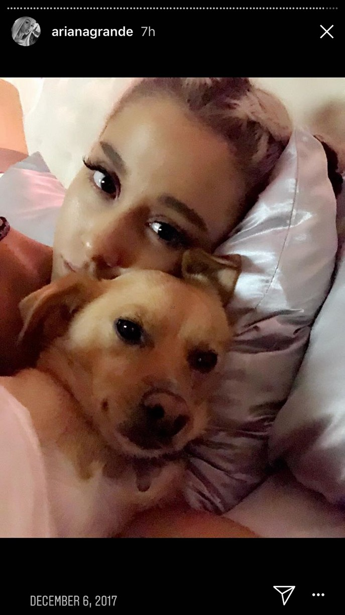 ariana grande 2017 recap instagram stories 03