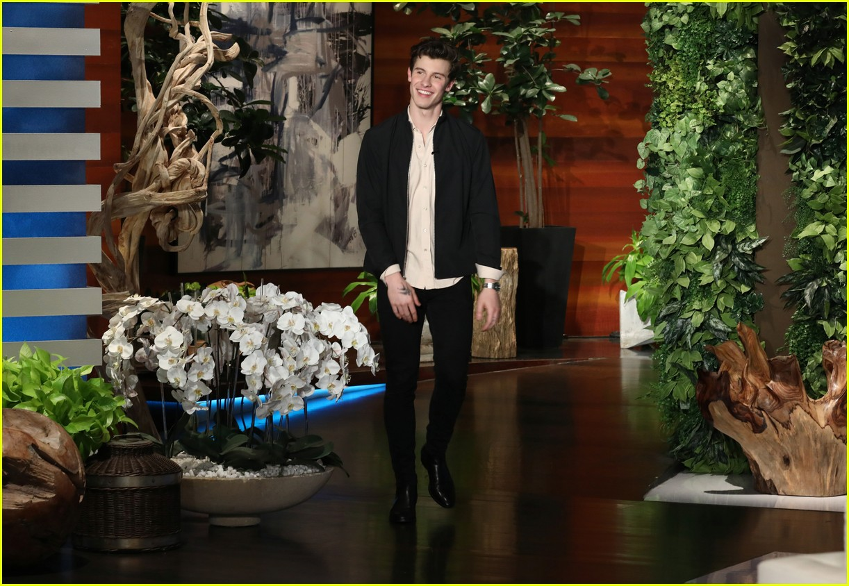 shawn mendes dishes on his awkward moments with british royals 01