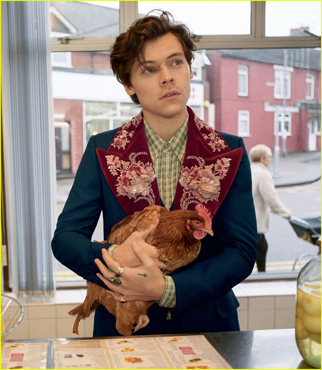 harry styles gucci campaign 02