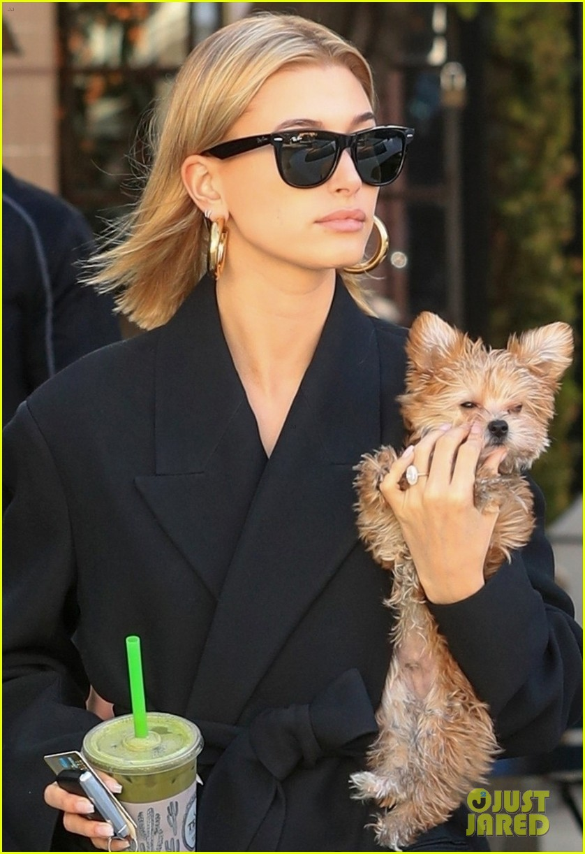 hailey bieber flashes her midriff while stepping out with puppy oscar 02