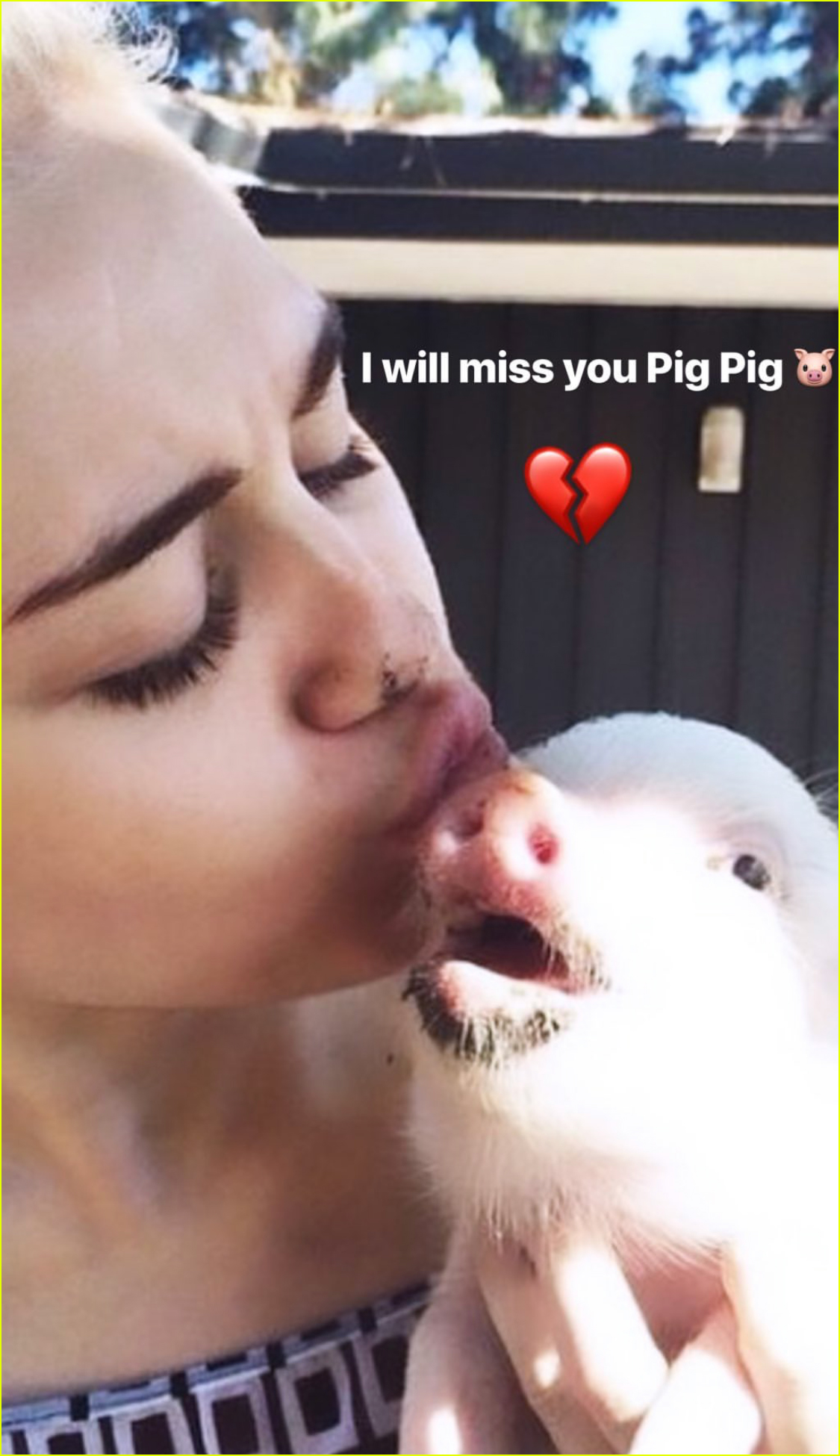 miley cyrus mourns death of pet pig 02