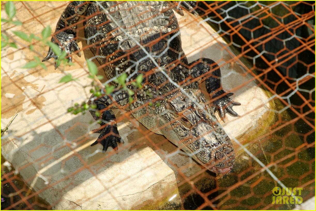 kaya scodelario crawl alligator event 17