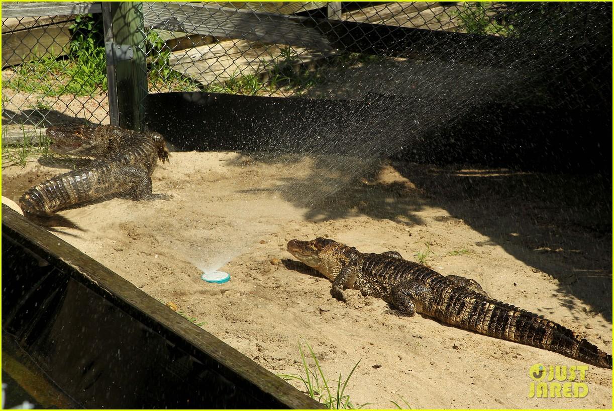kaya scodelario crawl alligator event 22