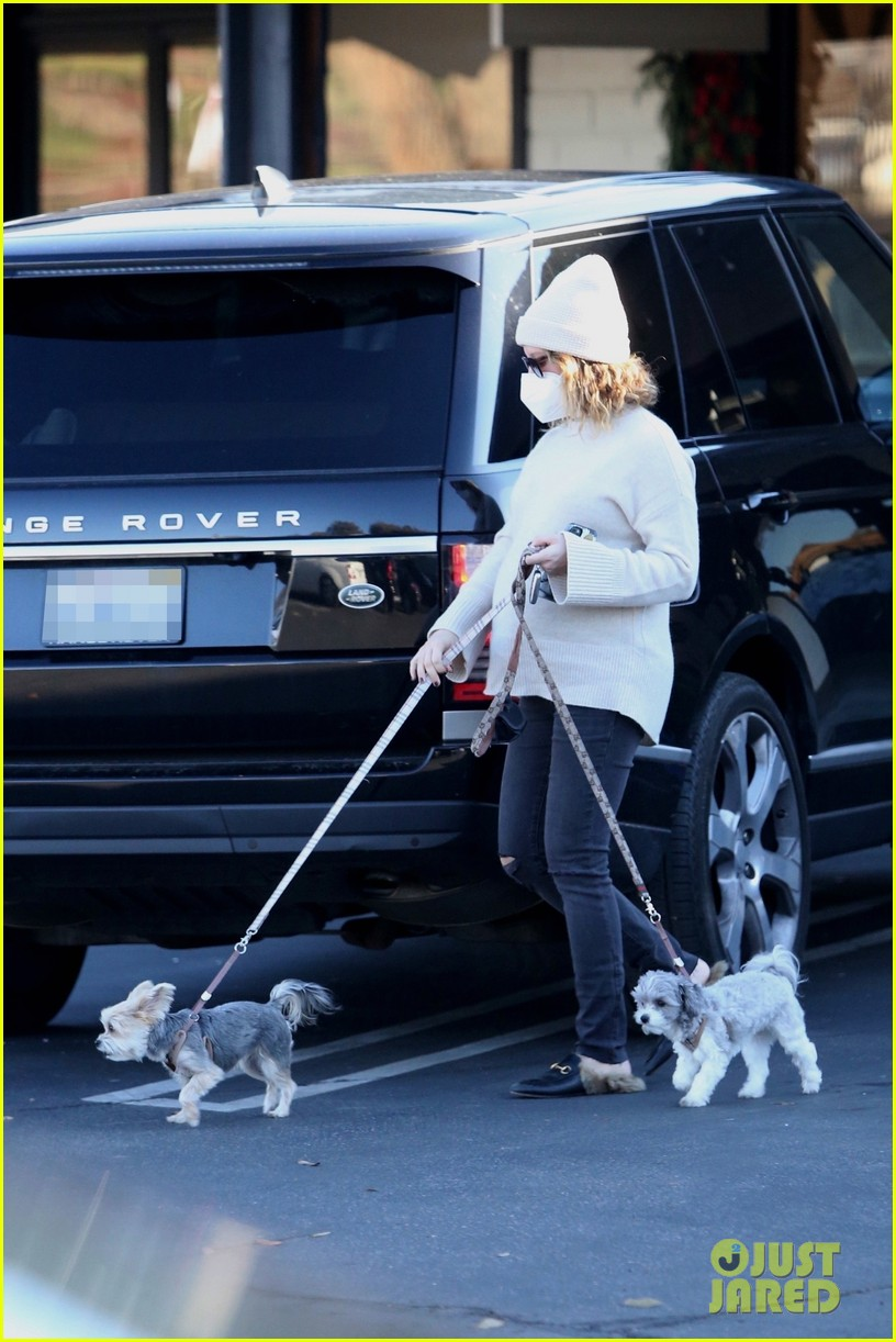 pregnant ashley tisdale takes her dogs while shopping 01