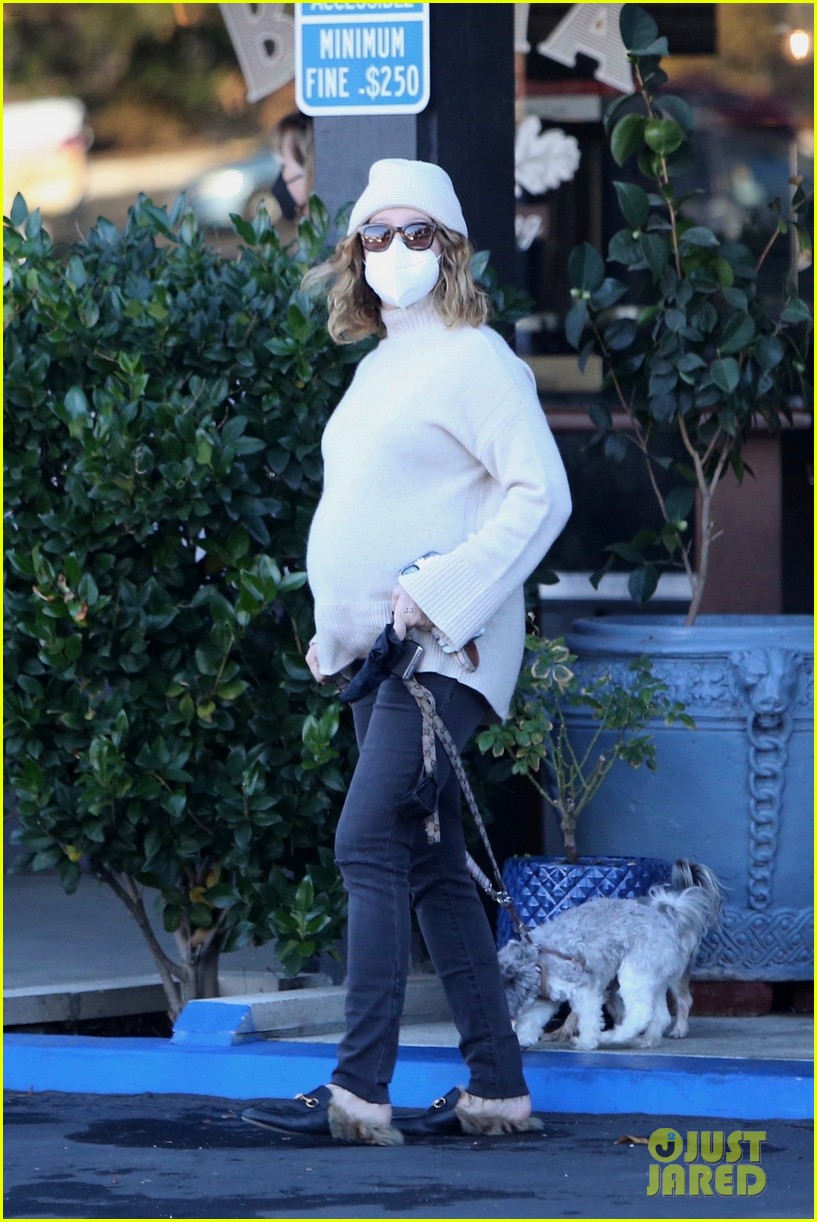 pregnant ashley tisdale takes her dogs while shopping 04
