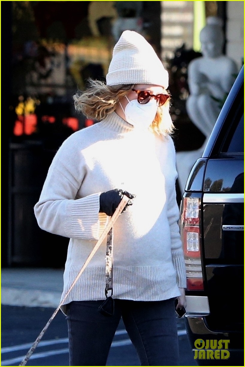 pregnant ashley tisdale takes her dogs while shopping 05