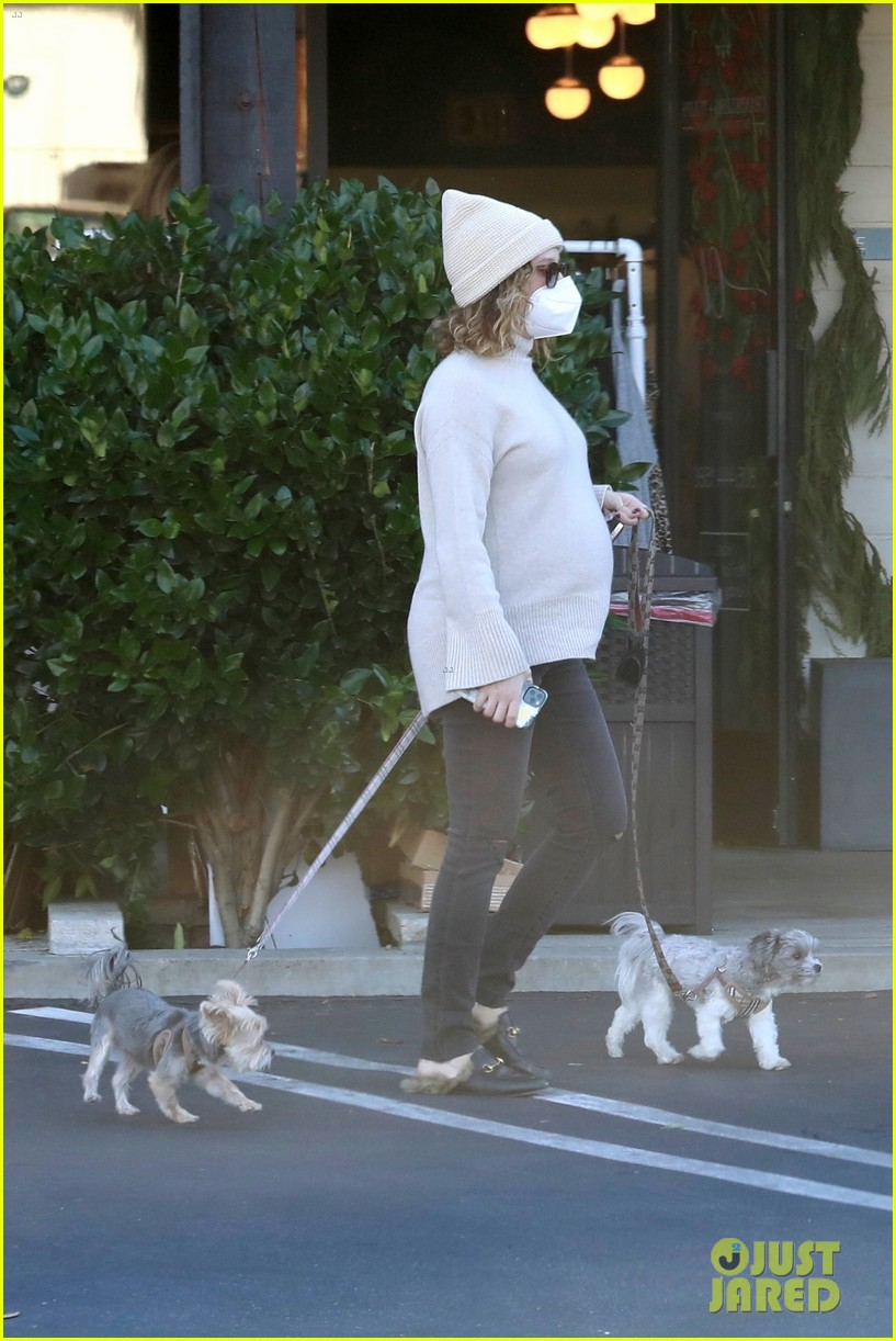 pregnant ashley tisdale takes her dogs while shopping 08