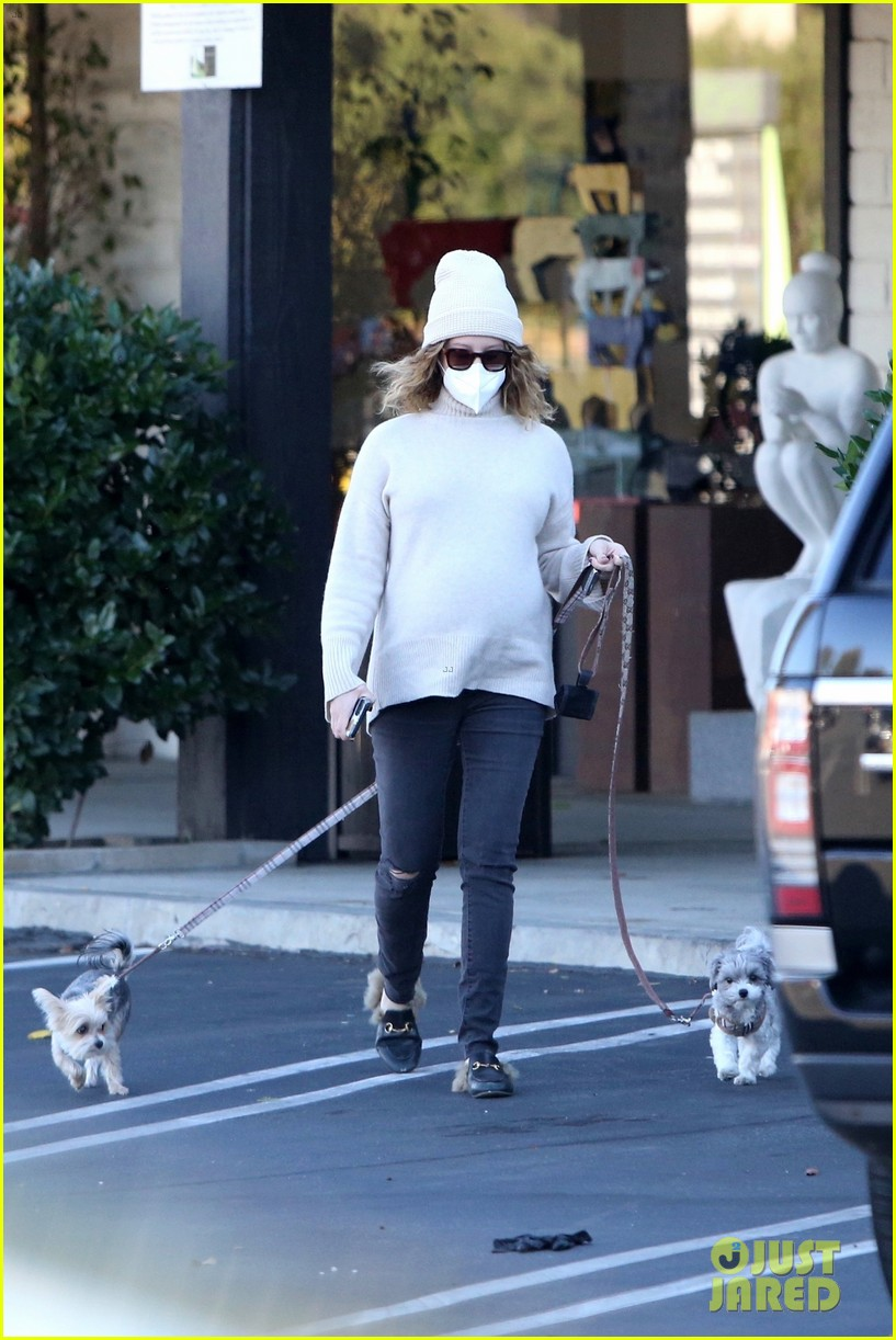 pregnant ashley tisdale takes her dogs while shopping 13