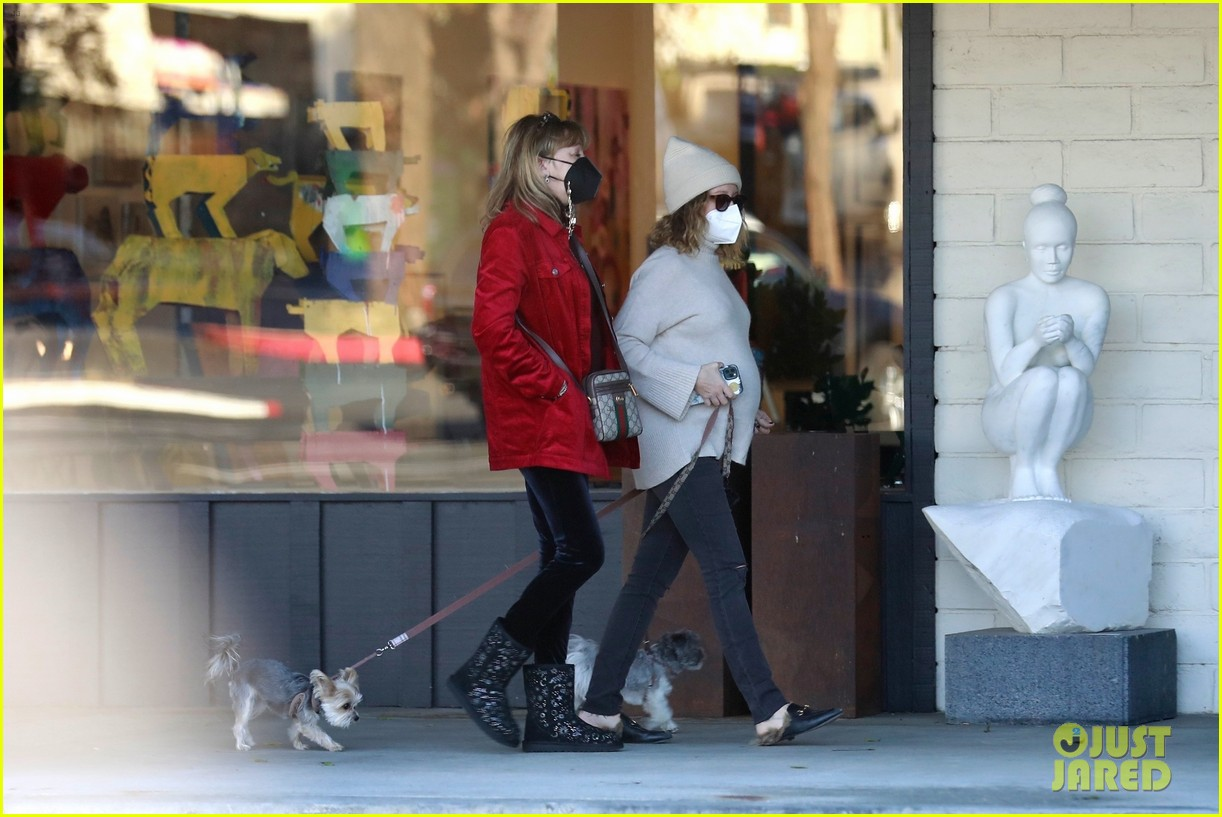 pregnant ashley tisdale takes her dogs while shopping 14