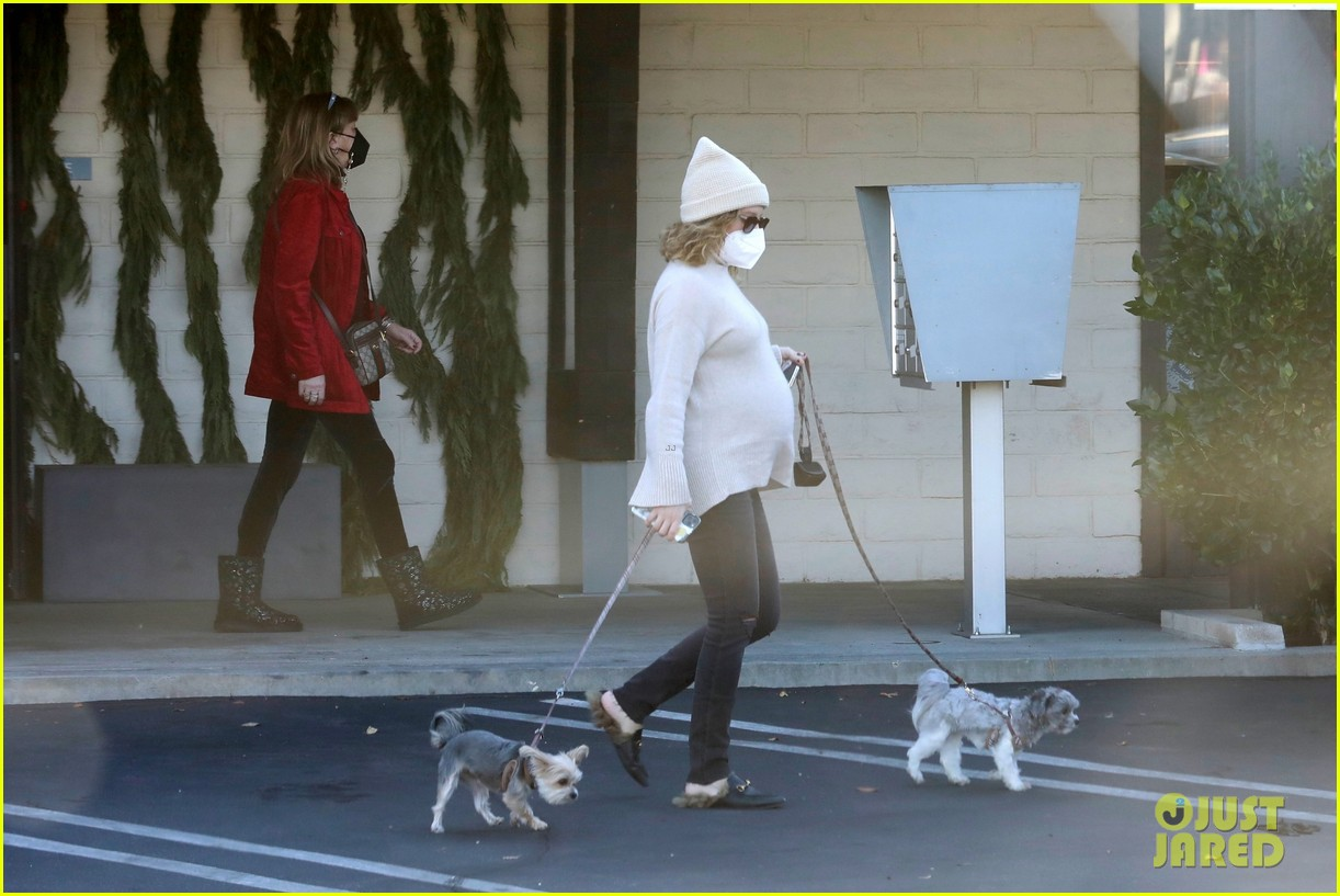 pregnant ashley tisdale takes her dogs while shopping 18