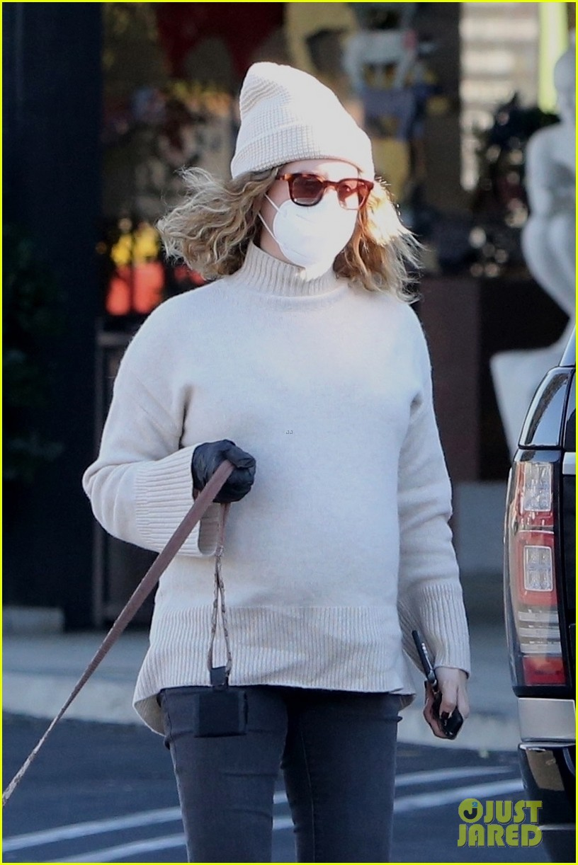 pregnant ashley tisdale takes her dogs while shopping 21