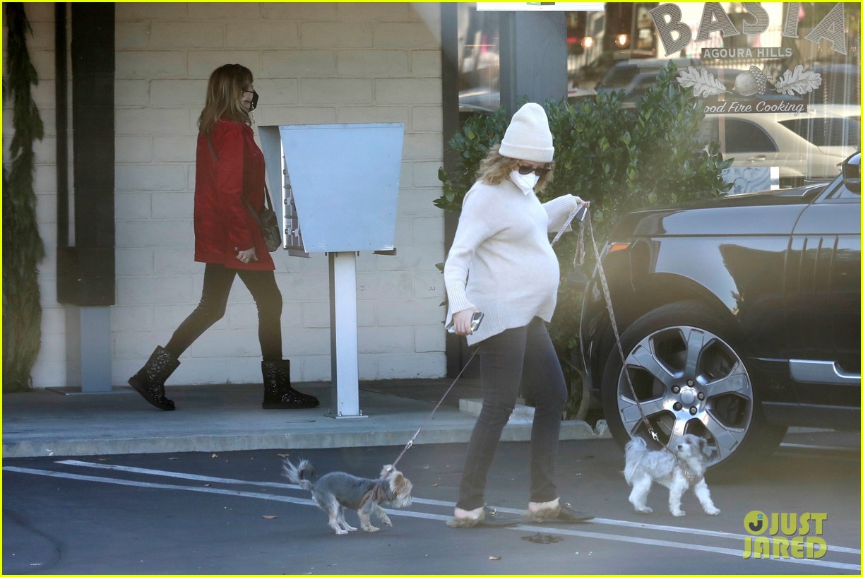 pregnant ashley tisdale takes her dogs while shopping 30