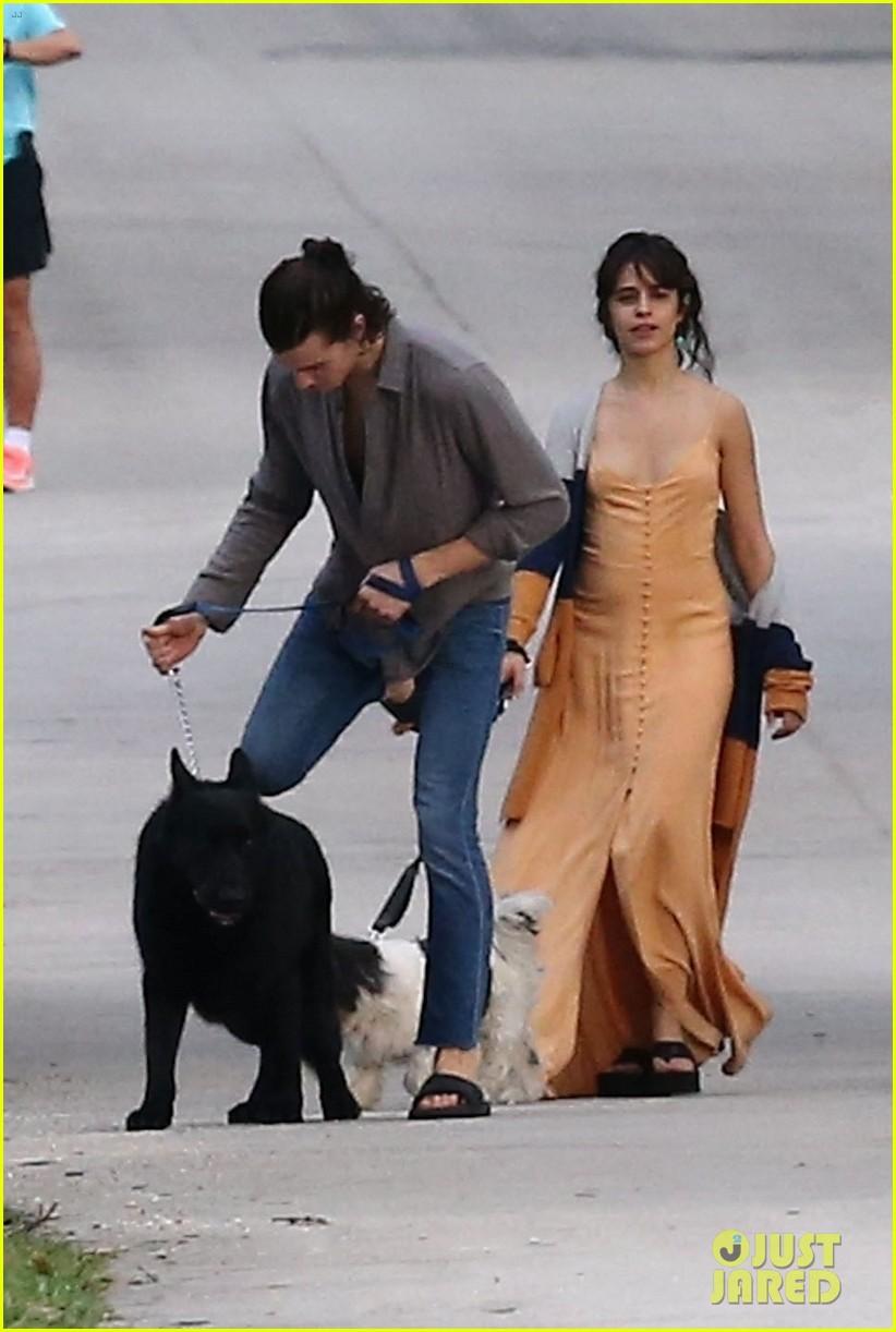 shawn mendes camila cabello walk dogs parents 03