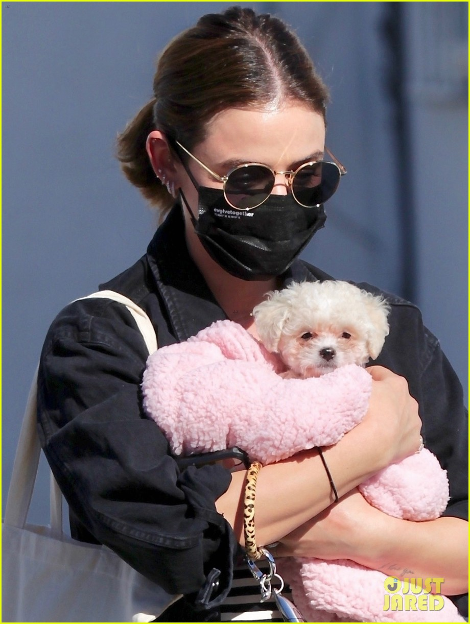 lucy hale new puppy fostered by this star 02