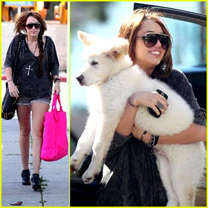 Miley Cyrus & Mate Head to the Studio