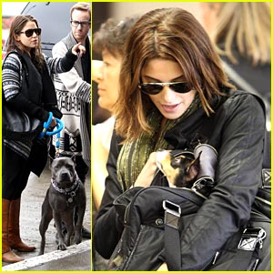Ashley Greene & Nikki Reed: Traveling With the Dogs