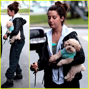 Ashley Tisdale: Errands with Maui in Vancouver