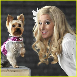 Ashley Tisdale: Sharpay's Fabulous Adventure Premieres May 22 on Disney Channel!