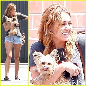 Miley Cyrus: TWO Million Twitter Followers!