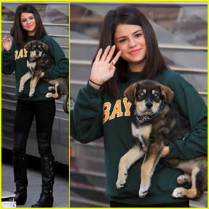 Selena Gomez Plays With Her New Puppy