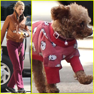 Blake Lively: 'Gossip Girl' Set with Her Dogs