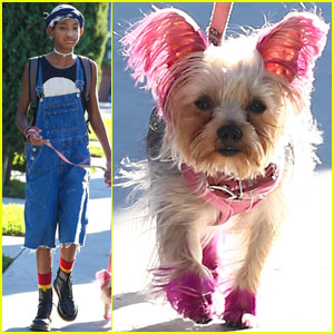 Willow Smith Launches a Fashion Blog!