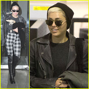 Miley Cyrus Flies with Pup Bean
