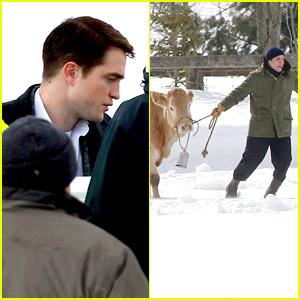 Robert Pattinson: Cattle Wrangler on 'Life' Set