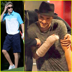 One Direction's Liam Payne Catches a Movie While Niall Horan Tees Off