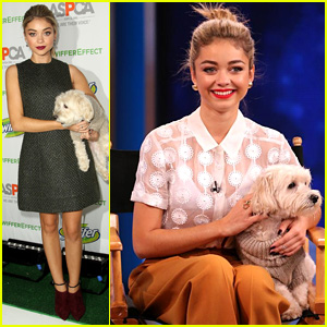 Sarah Hyland Says She's 'Great' After Restraining Order Against Ex Matt Prokop