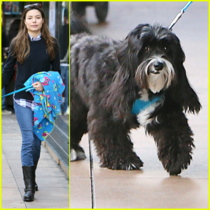 Miranda Cosgrove Brings Pup Penelope Holiday Shopping With Her