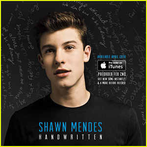 Shawn Mendes Drops New Single 'A Little Too Much' - Full Song & Lyrics!