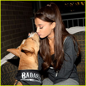 Ariana Grande Will Pay Adoption Fees for These Dogs!