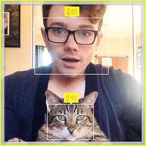 Chris Colfer Posts Hilarious Pic With His Cat On 25th Birthday